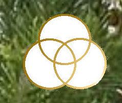 photo regarding Chrismons Patterns Printable named Chrismon Layouts